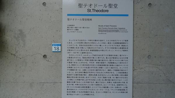 DSC08377_R.JPG